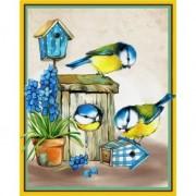 Vriendelijke Vogels