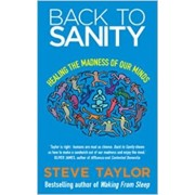 Back to Sanity: Healing the Madness of Our Minds, Paperback/Steve Taylor