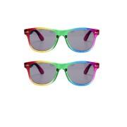 Bullet 2x Festival/Feest regenboog zonnebrillen retro voor volwassenen