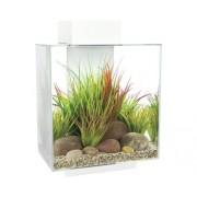 Set acvariu Fluval Edge 2.0, 46 l, cu filtru intern, iluminare LED, dispozitiv de tratare a apei, fara dulap inferior inclus, alb