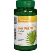 Extract Palmier Saw Palmetto 540mg Vitaking 90cps