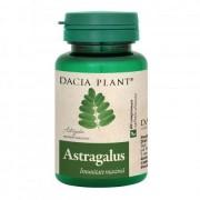 ASTRAGALUS 60cpr DACIA PLANTsistem imunitar