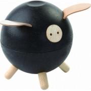 Pusculita porcusor - culoare negru