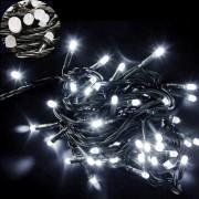 Instalatii Luminoase Craciun Snur 6m 60LED Alb Rece FN NP I8046