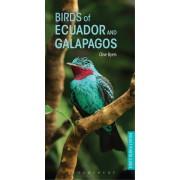 Vogelgids Pocket Photo Guide Birds of Ecuador and Galapagos | Bloomsbury