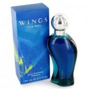 Giorgio beverly hills wings for men eau de toilette 100 ml spray