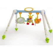 Jucarie bebelusi Taf Toys Foldable Play Centre - Walking Bee