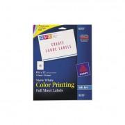 Full-Sheet Vibrant Color-Printing Labels, 8 1/2 X 11, Matte White, 20/pack