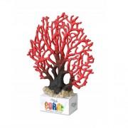 Coral Lace XL