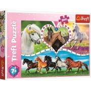 Puzzle clasic pentru copii - Cai frumosi 200 piese, Trefl