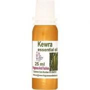 Fragrance And Fashion Kewra Essential Oil Of 25 Ml (25 Ml)