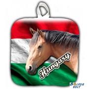 Edényfogó, Hungary - barna ló