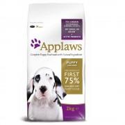 2x15kg Applaws Cachorros deraças Grande Frango ração