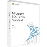 Microsoft SQL Server 2019 Standard 1 User CAL