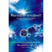 What the Bleep Do We Know!?: Discovering the Endless Possibilities for Altering Your Everyday Reality, Paperback