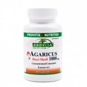 Agaricus Blazei Murill 1000mg 90 capsule Provita Nutrition
