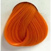 szín haj DIRECTIONS - Apricot
