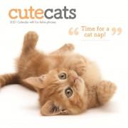 Tuinland Kalender 2021 Cute Cats