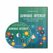 Curs Video - Promovare Eficienta Google Adwords in Romana - Ghid Practic