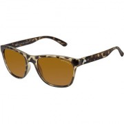David Blake Brown Polarized UV Protected Wayfarer Sunglass