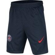 Nike Paris Saint Germain Trainingsbroekje 2020-2021 Kid - Donkerblauw - Size: 164