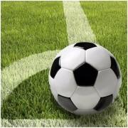 100x Voetbal feest thema servetten 33 x 33 cm - Papieren wegwerp servetjes - Voetbal kinderfeestje versieringen/decoraties