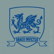 T-shirt Draco Invictus