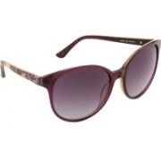 Guess Cat-eye Sunglasses(Violet)