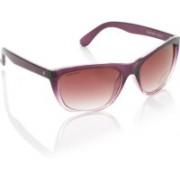 Fastrack Cat-eye Sunglasses(Pink)