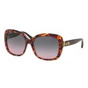 Coach HC8158F Asian Fit Sunglasses 533990