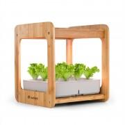 Blumfeldt Urban Bamboo, интелигентна домашна градина, 12 растения, 24 W LED, 7 литра, бамбук (HGA1-Urban Bamboo)