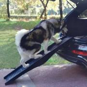 Pet-Star klappbare Hunderampe