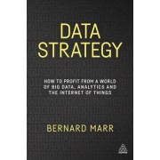 Data Strategy: How to Profit from a World of Big Data, Analytics and the Internet of Things, Paperback