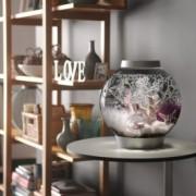 Set complet acvariu cu decoratiuni BiOrb Classic 15 litri MCR, Argintiu