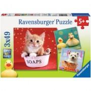 Puzzle Animale Adorabile , 3X49 Piese Ravensburger