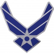 Parche United States Airforce