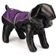 Beeztees Nano hondenjas Aspen paars 50 cm