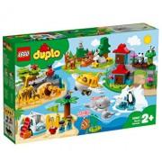 LEGO DUPLO, Animalele lumii 10907