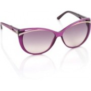 Diesel Cat-eye Sunglasses(Grey, Violet)