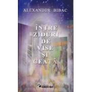 Intre ziduri de vise si ceata - Alexander Bibac