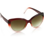 Spykar Cat-eye Sunglasses(Brown)