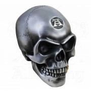 Décoration (crâne) ALCHEMY GOTHIC - Metalised Alchemist Skull - V41