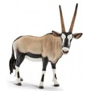Anryopa Oryx