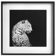 Fotolijst Goes - zwart - 40x40 cm - Leen Bakker