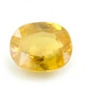 Jaipur Gemstone 5 -Ratti IGL&I Yellow Yellow Sapphire (Pukhraj) Precious Gemstone
