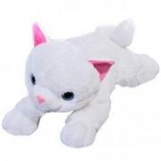 Pisica din plus alba urechi roz