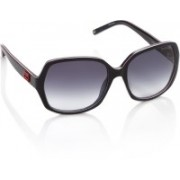 Tommy Hilfiger Over-sized Sunglasses(Blue)
