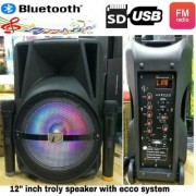 12 inch trolly dj speaker with bluetooth/fm/usb/sd/aux/mic/gittar