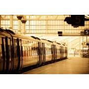 rabbit75_fot Naklejka historia, stary, podróżować, podróż, transport