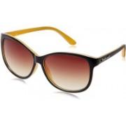 Fastrack Cat-eye Sunglasses(Red)